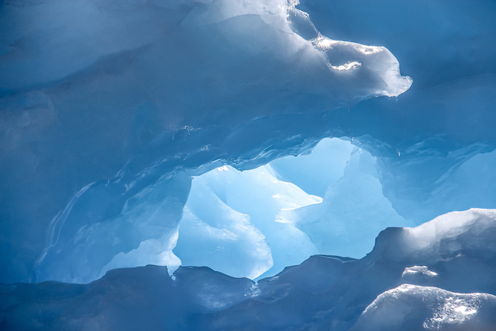 Eisberge Cuverville Island MS Midnatsol Antarktis 6