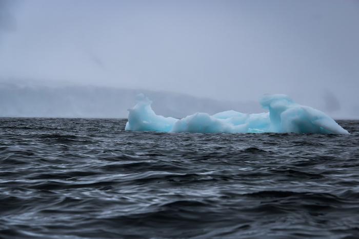 Half Moon Bay Eisscholle