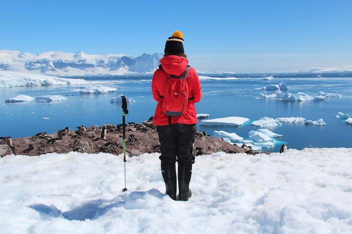 Verhalten in der Antarktis