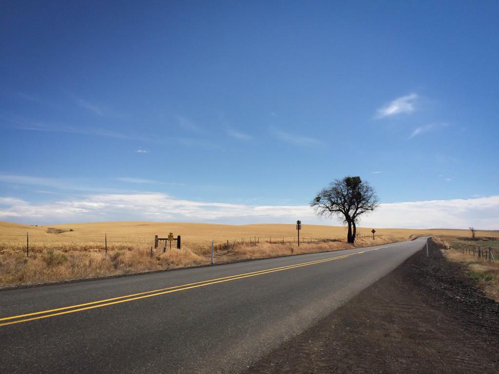 Highway 97 Oregon Reodtrip