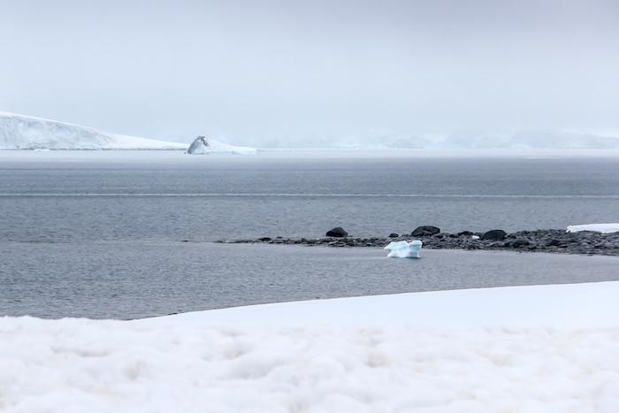 Half Moon Bay Antarctica